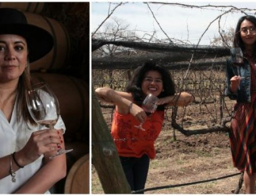 They are changing the world of Mexican wine one glass at a time.