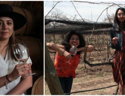 Ellas están cambiando el mundo del vino mexicano una copa a la vez